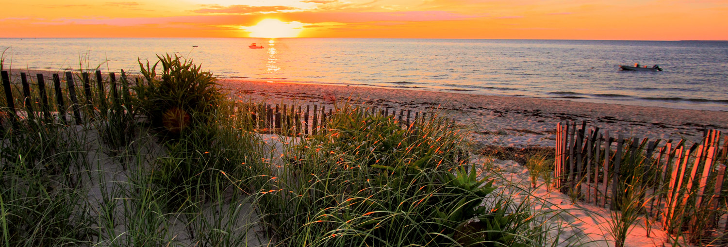Ready to let Home Sitters make it easier and more enjoyable to own your home on Cape Cod? Contact us today for a free consultation!